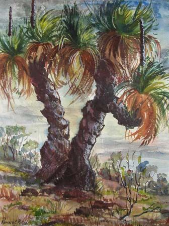 Yucca trees by Ronald C Bell