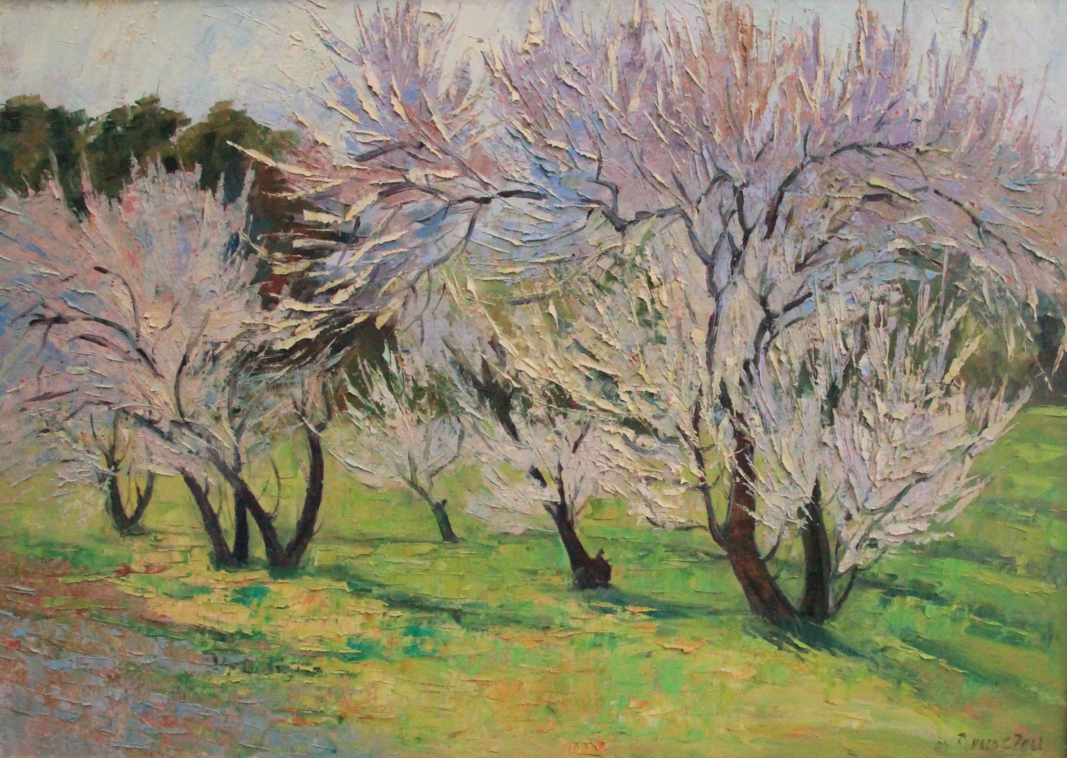 Almond Flowers by Ronald C Bell