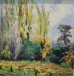 Poplars by Ronald C Bell