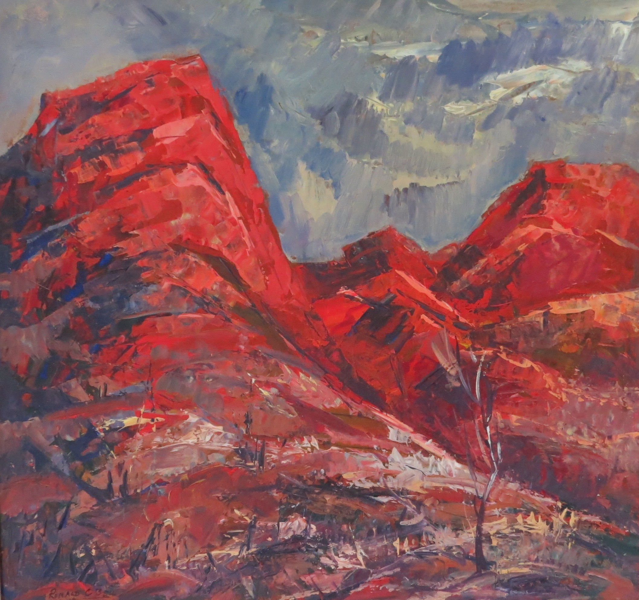 Kings Canyon by Ronald C Bell