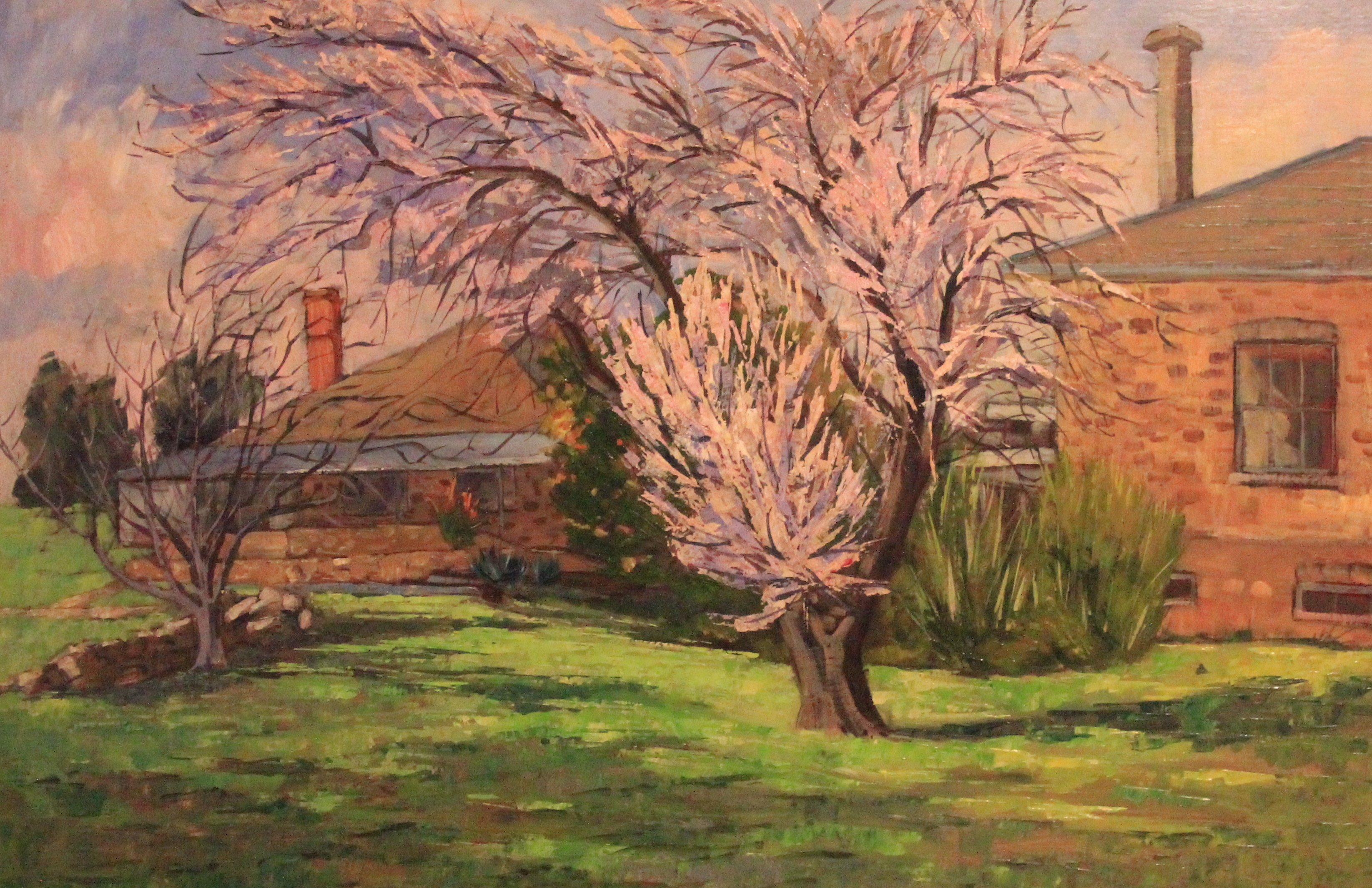 Tree flowers by Ronald C Bell