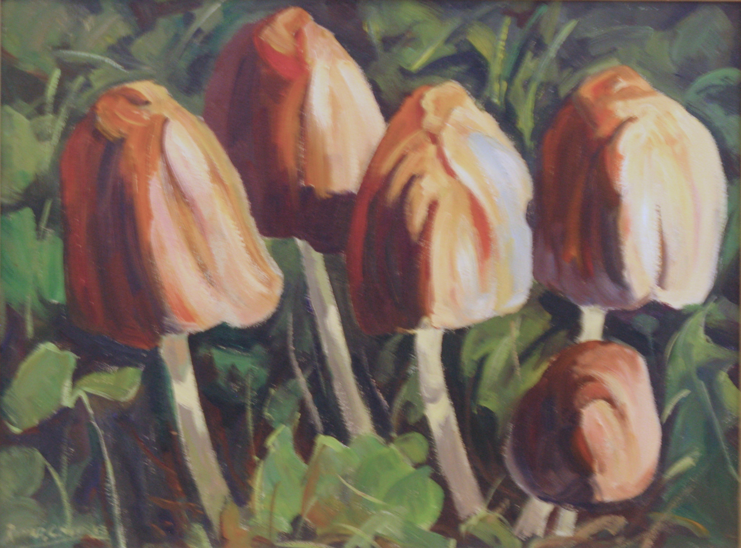 Mushrooms by Ronald C Bell