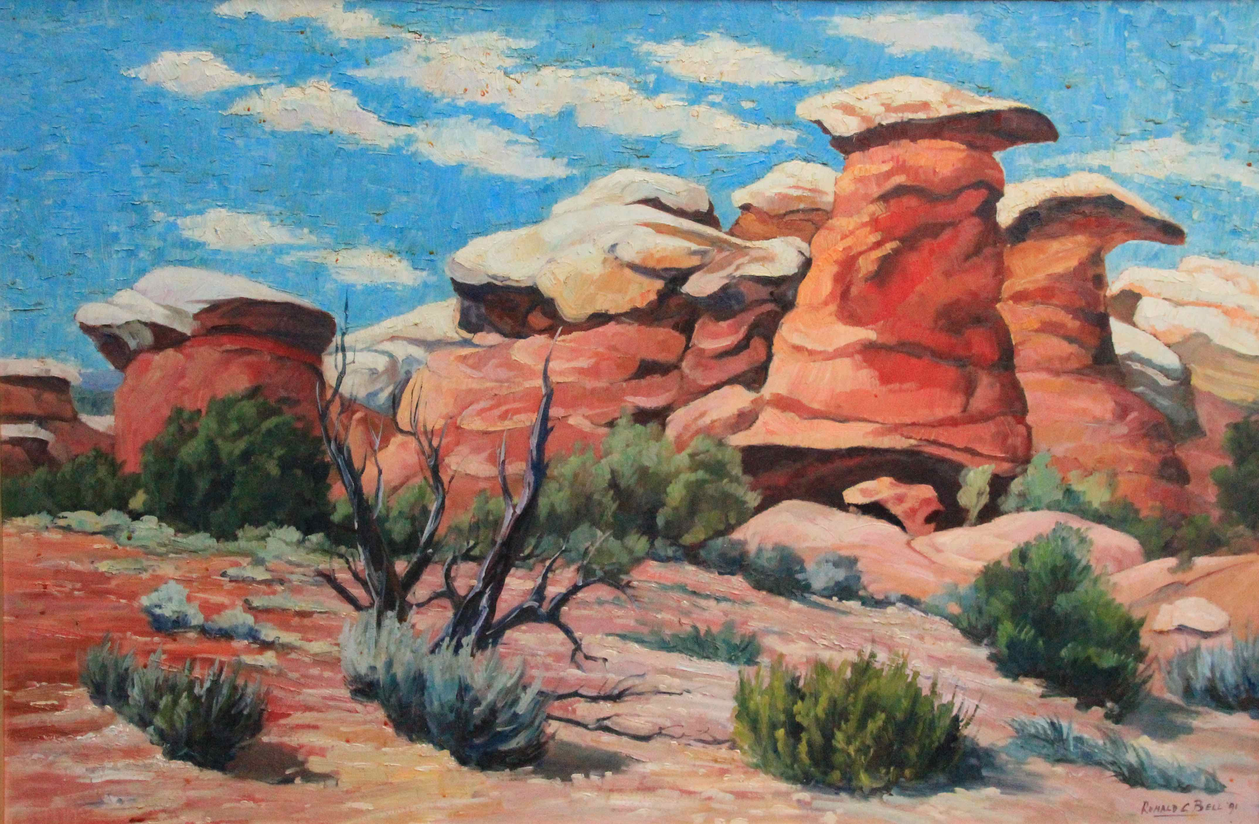 South Canyonlands by Ronald C Bell