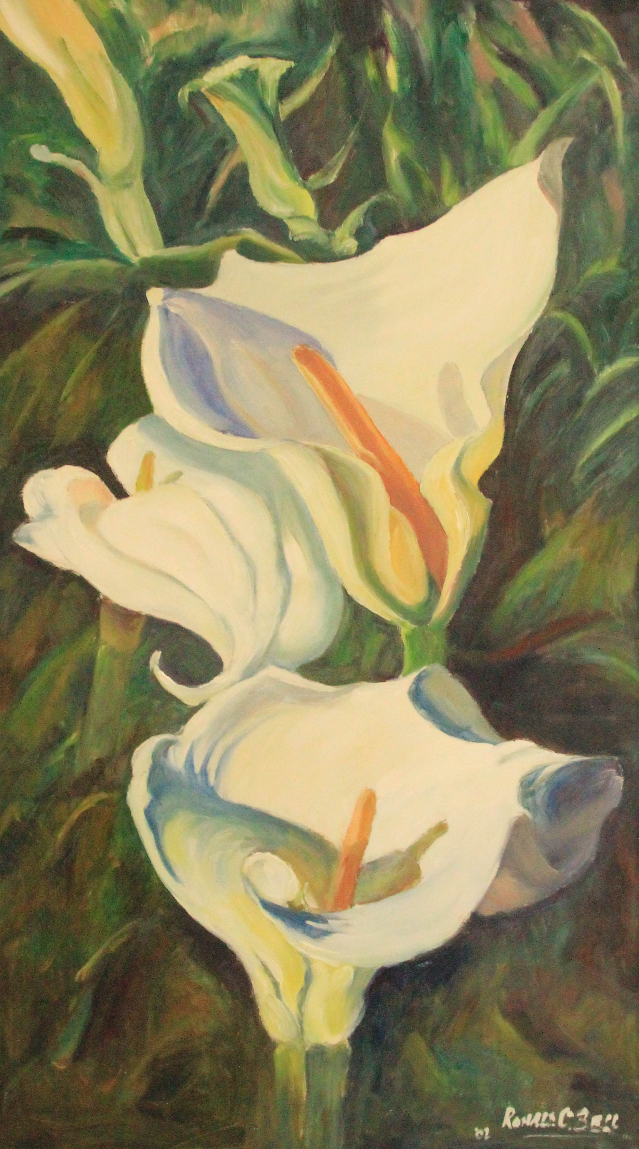 Lillies by Ronald C Bell