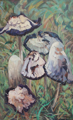 Mushrooms dance by Ronald C Bell