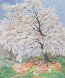 Trees in Flower 2