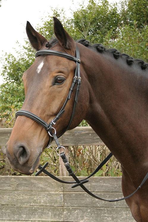 Harry's Horse - Bitless noir