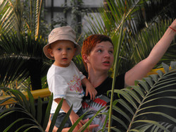 Przepustka. Wycieczka do palmiarni.