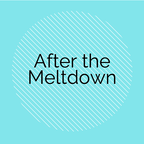After the Meltdown