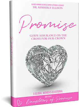 Promise-book-image.png