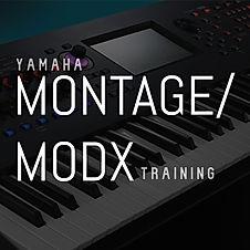 MontageMODX training.jpg