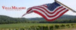 Flag-CROP2.jpg
