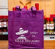 Amigo bag crop.jpg