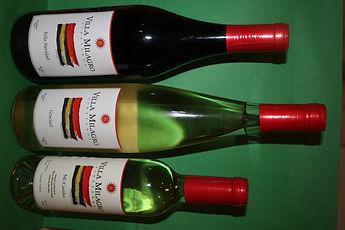 Holiday wine.jpg