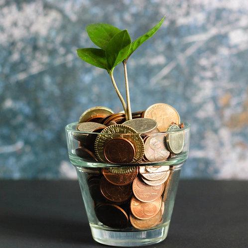The Money Tree meditation