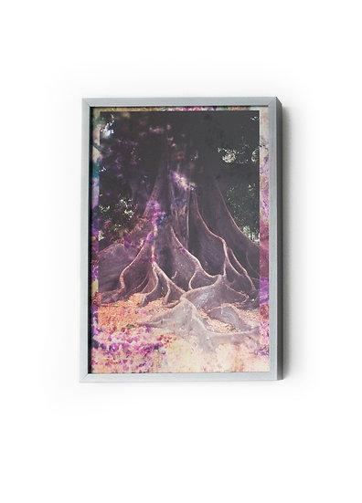 Pink Tree by Maya Rochat