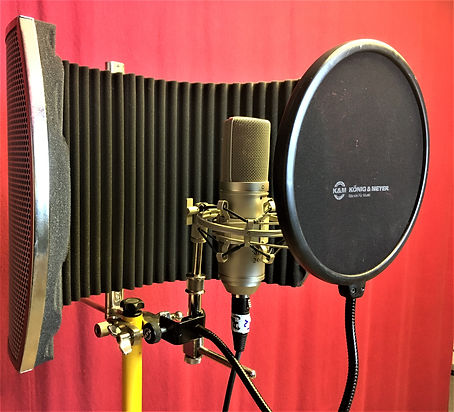 Sustain Tonstudio Scheyern Mikrofon.jpg