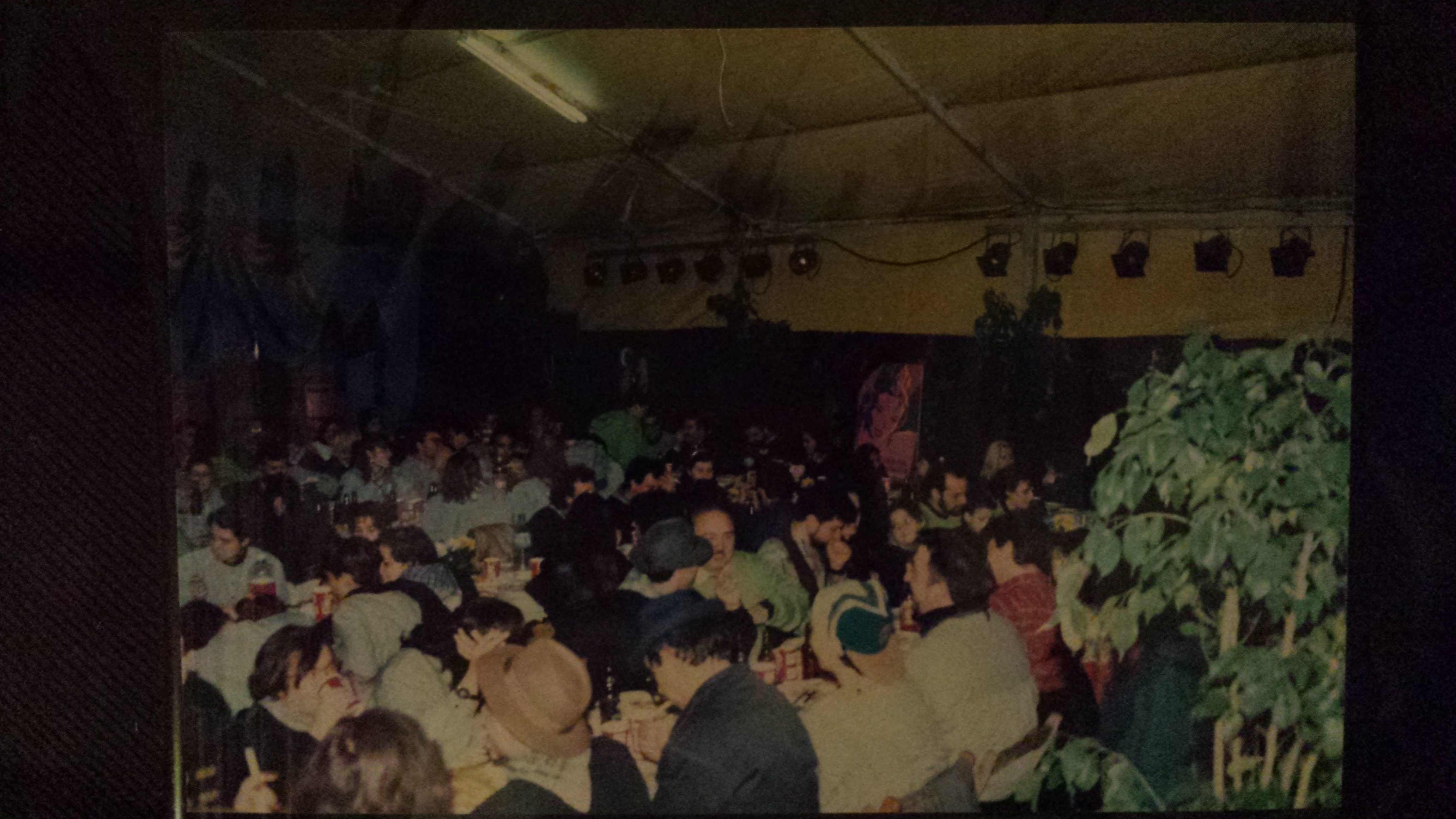 Cena plantà 1993