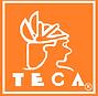 Teca2.png