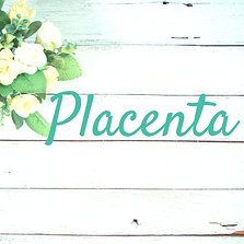 4-21 Placenta encapsulation.png