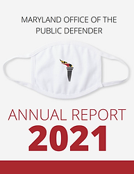 2021 report cover.png