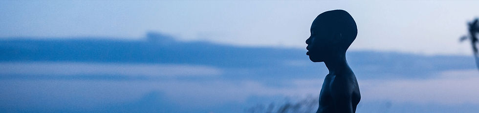 Moonlight-Banner.jpg