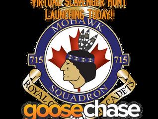 Virtual Scavenger Hunt - GooseChase