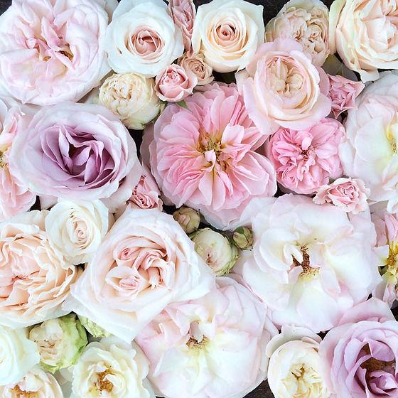 blushing flowers.jpg