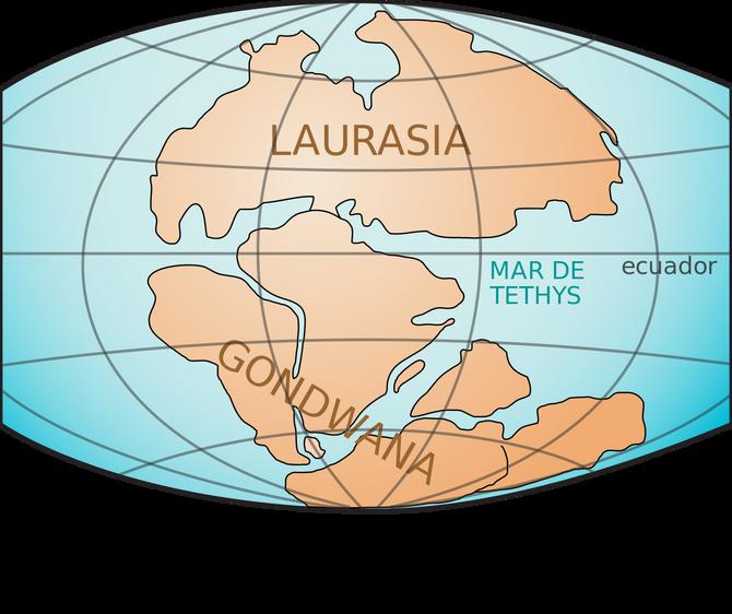 Los ciclidos africanos: El origen