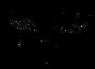 beehuman-tag-logo_edited.png