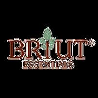Briut logo new  2000 x 2000-722-3.png