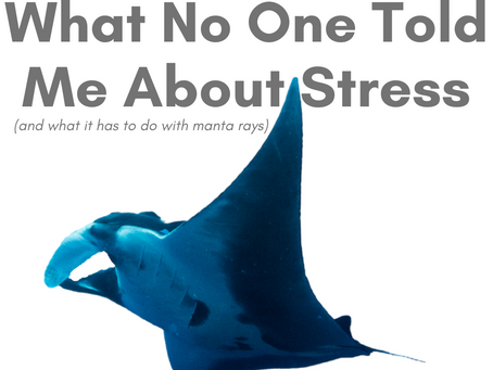 What No One Told Me About Stress