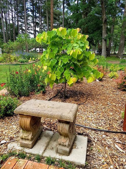 Memorial Bench - Small