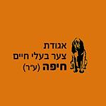 צבח חיפה לוגו.png