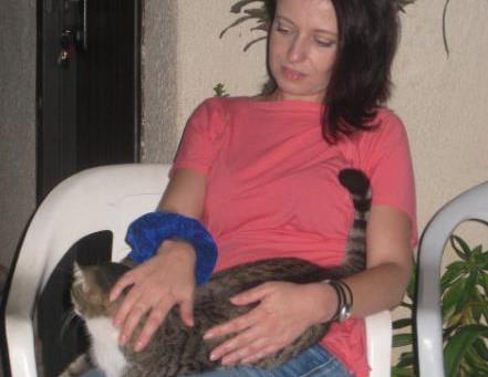 ניהול עמותה לרווחת בעלי חיים בזמן משבר