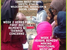 Herbalism For Teens  (Ages 13 - 16)