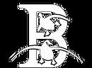 Bluestem Waterfowl logo-HB-WHITE.png