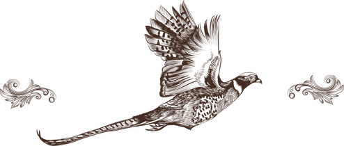 PHEASANT_with detail.png