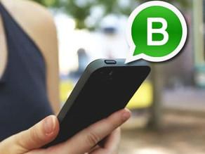 WhatsApp Business Garantía de Éxito
