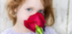 Free lesson plan and resources for the sense of smell: What's the Sense in that Behavior?