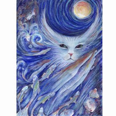 Cat's Dreamland art print Cats Fantasy
