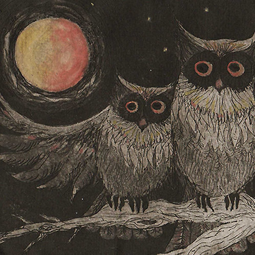 Night Owls limited edition owl etching print by Liza Paizis