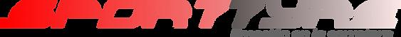 Logo SportTyre NEW