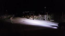 LEDIAMOND PUREWHITE NICTITANTE Noche