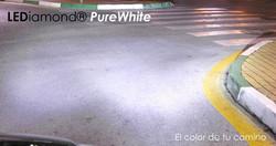 Lediamond purewhite