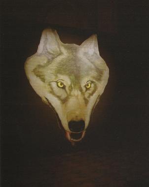 tête de loup sur fond noir