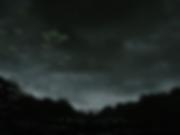 paysage nocturne sur un lac de nénuphar et l'inscription No future