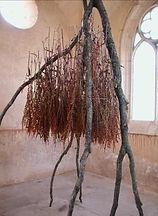 branche d'arbre mort  et feuillage séché
