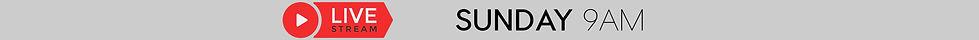 CV Live Stream Banner dark.jpg