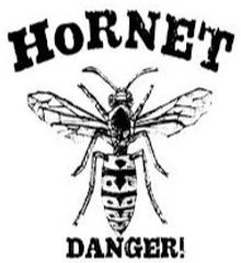 hornet_edited.jpg